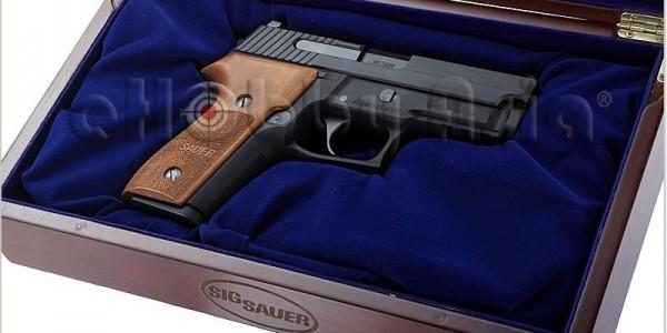 Inokatsu SIG SAUER P229 GBB Pistol @ eHobby