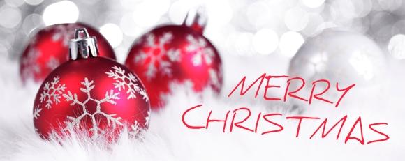 Merry Xmas Happy new year!